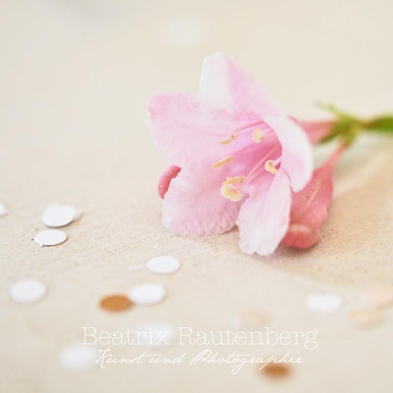 Blumenkonfetti square S klein